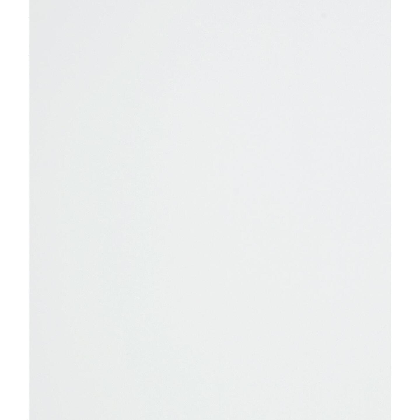 DPI 4 Ft. x 8 Ft. x 1/8 In. White Smooth Wall Paneling Image 2